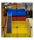 CagesCubes - Jaula CyC modelo Cavy Color One para cobayas
