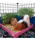 CagesCubes - Bandeja Corralito higienica