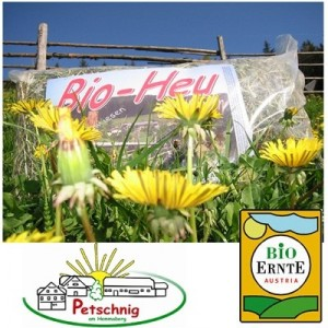 Heno Biologico de montaña para roedores 1.5 kg (Austria) - Casa Petsching