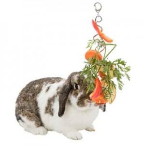 Trixie Porta frutas para roedores