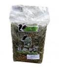 HERRE Nutricion - Heno de Festuca con Zanahoria 500 grs para conejos y cobayas