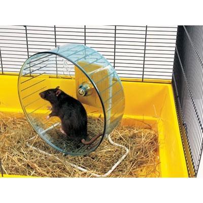 Savic Rueda de ejercicio con soporte para ratas y chinchillas