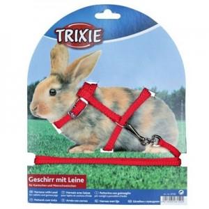 Trixie Arnes con correa para conejos enanos