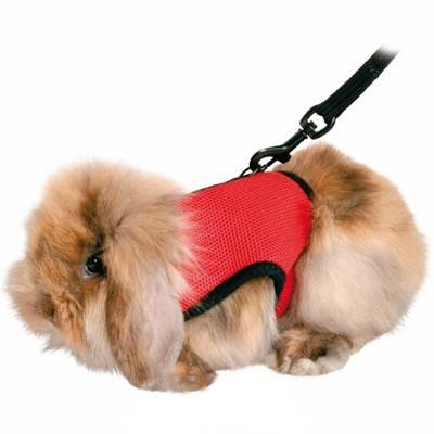 Trixie Arnes Deluxe confort para cobayas y conejos enanos