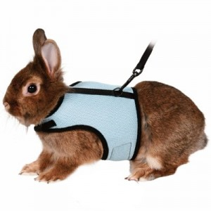 Trixie Arnes con correa para conejos medianos / grandes