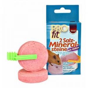 Trixie Ruedas de sal de roer para hamsters y pequeños roedores (2 uds) 54 gr