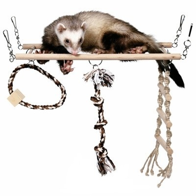 Trixie Juguete puente colgate multidiversion para ratas y chinchillas