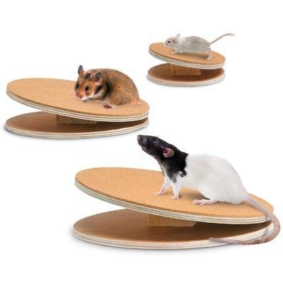 Karlie Disco de ejercicio para roedores