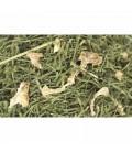 Jr farm crunchy de apio para conejos y roedores