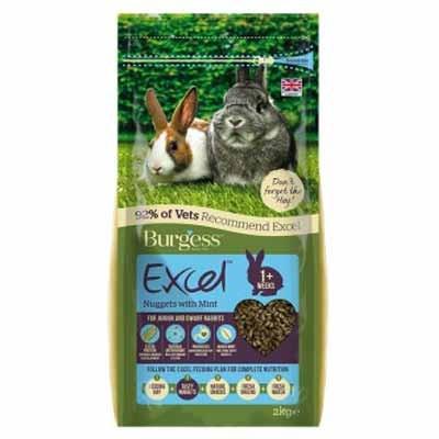 Burgess Excel Pienso con menta para conejos baby y conejos enanos toys