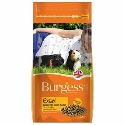 Burgess Excel pienso con menta para cobayas