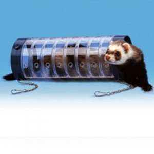 Ferplast Juguete Tubo de plastico transparente para cobayas y conejos enanos