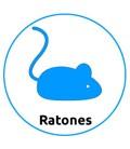Tienda para Ratones