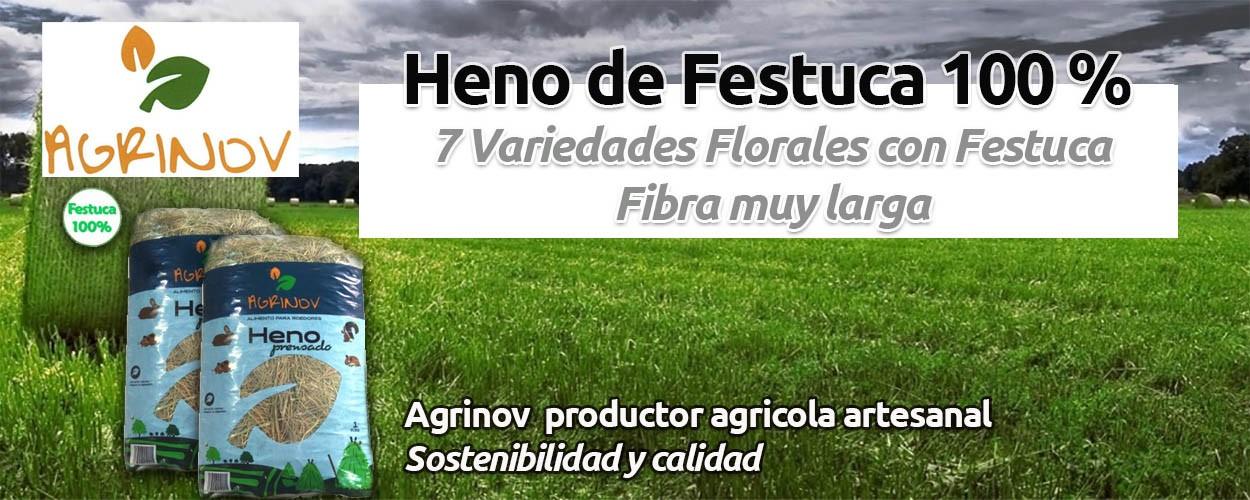 Agrinov Heno de Festuca mas 7 variedades florales