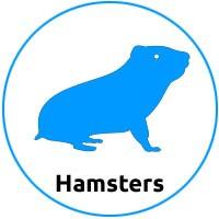 Tienda para hamsters
